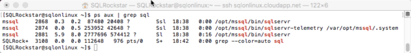 SQL Server vNext on Linux grep ps
